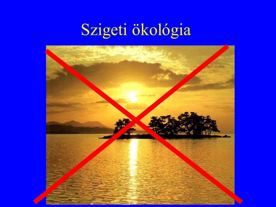 Szigeti ökológia
