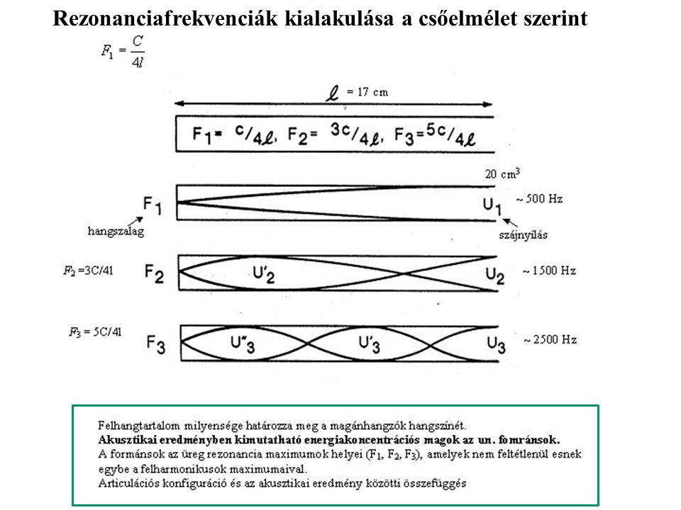 Rezonanciafrekvenciák kialakulása a csőelmélet szerint