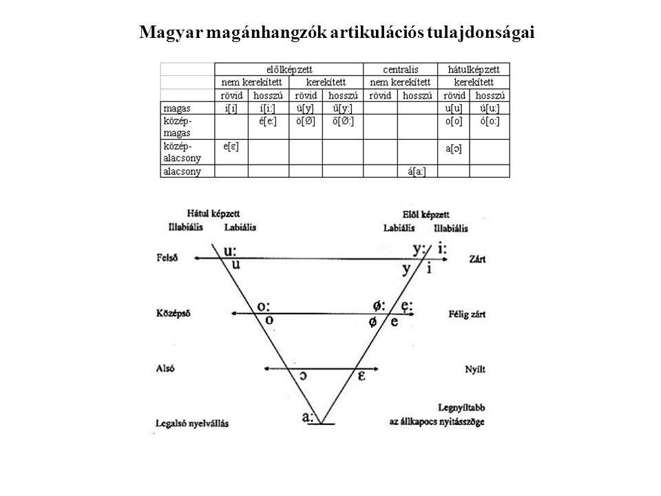 Magyar magánhangzók artikulációs tulajdonságai