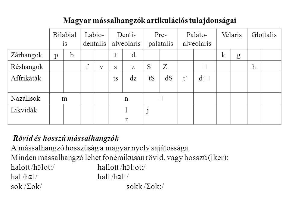 Magyar mássalhangzók artikulációs tulajdonságai