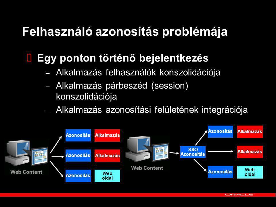 Felhasználó azonosítás problémája