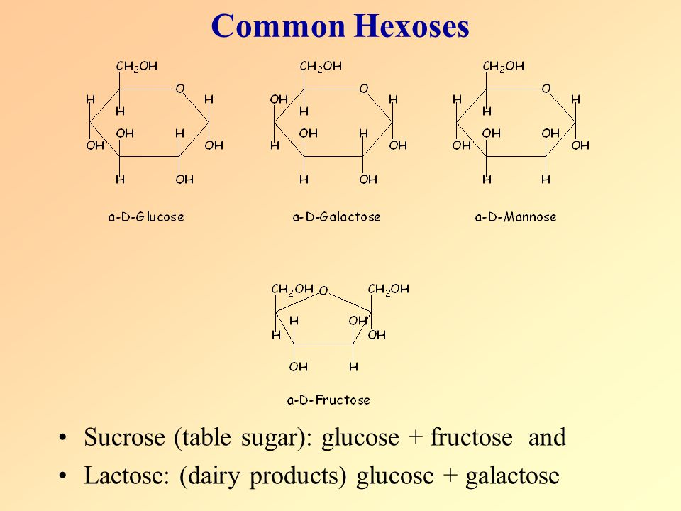 Common Hexoses Sucrose (table sugar): glucose + fructose and
