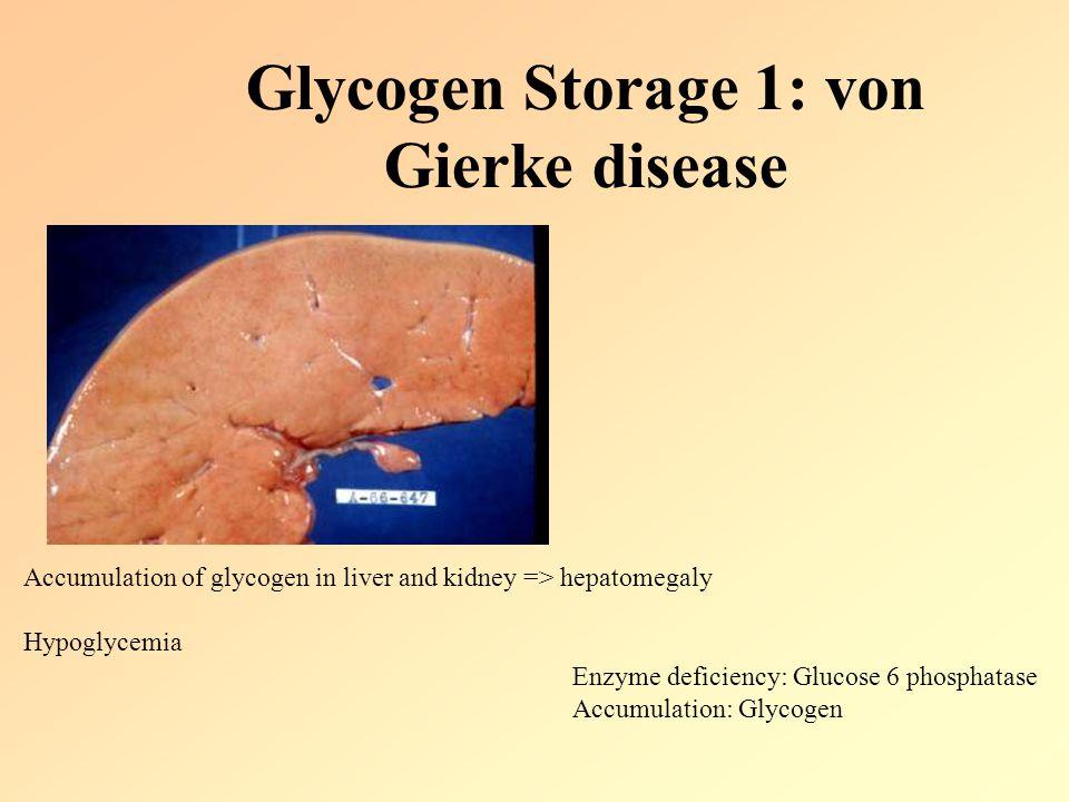 Glycogen Storage 1: von Gierke disease