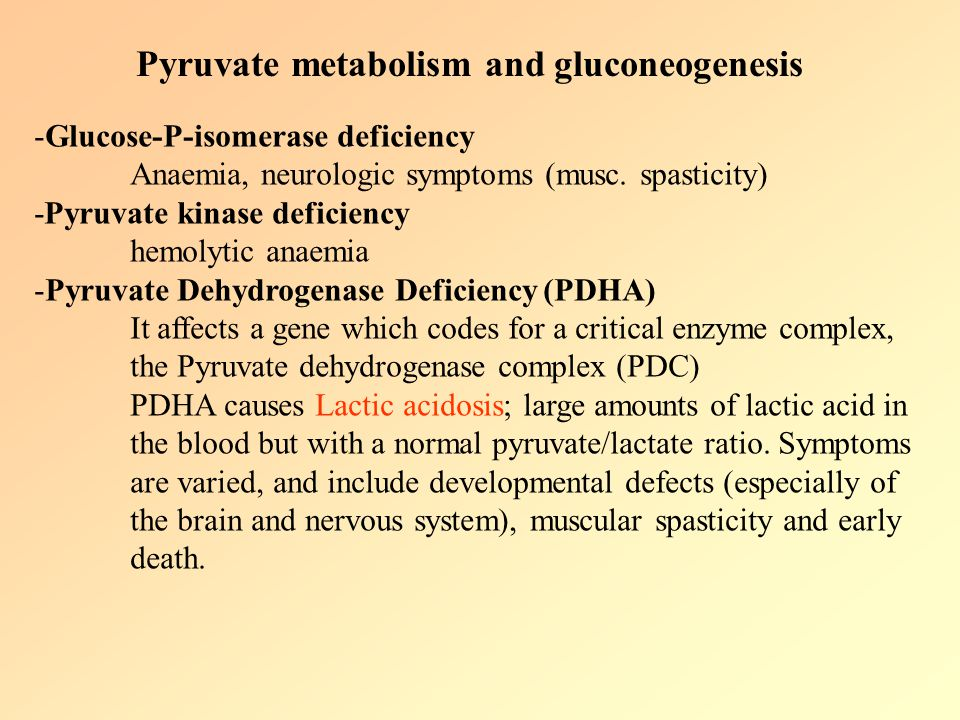 Pyruvate metabolism and gluconeogenesis
