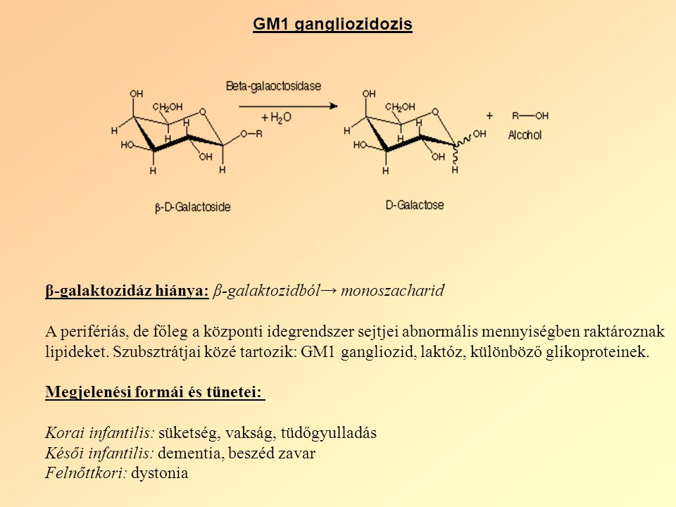 GM1 gangliozidozis β-galaktozidáz hiánya: β-galaktozidból→ monoszacharid.