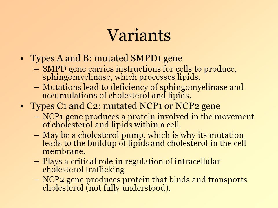 Variants Types A and B: mutated SMPD1 gene