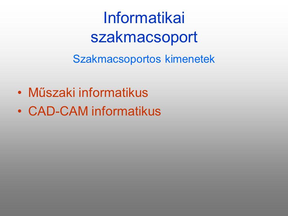 Informatikai szakmacsoport