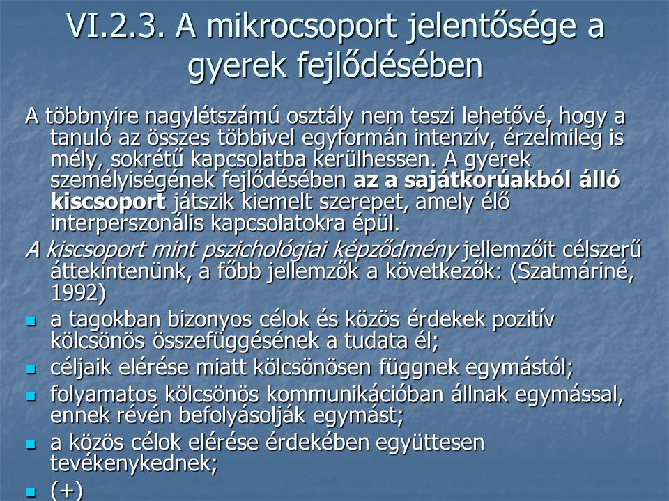 VI.2.3. A mikrocsoport jelentősége a gyerek fejlődésében
