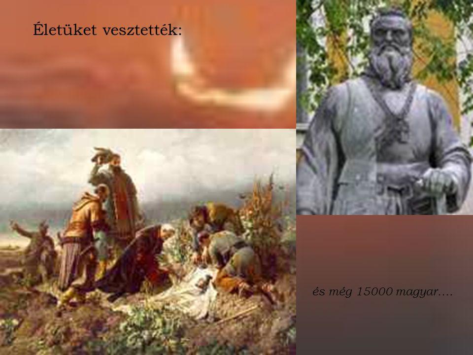 Életüket vesztették: és még 15000 magyar….