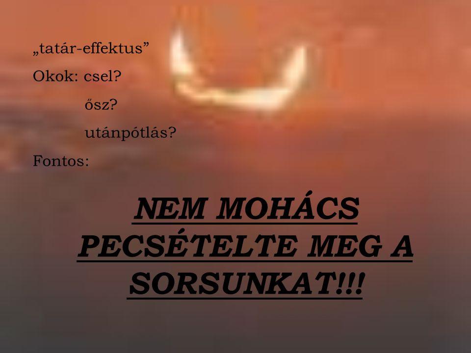 NEM MOHÁCS PECSÉTELTE MEG A SORSUNKAT!!!