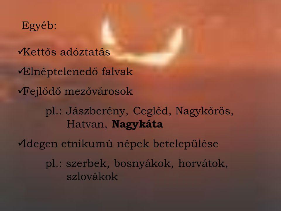 Egyéb: Kettős adóztatás. Elnéptelenedő falvak. Fejlődő mezővárosok. pl.: Jászberény, Cegléd, Nagykőrös, Hatvan, Nagykáta.