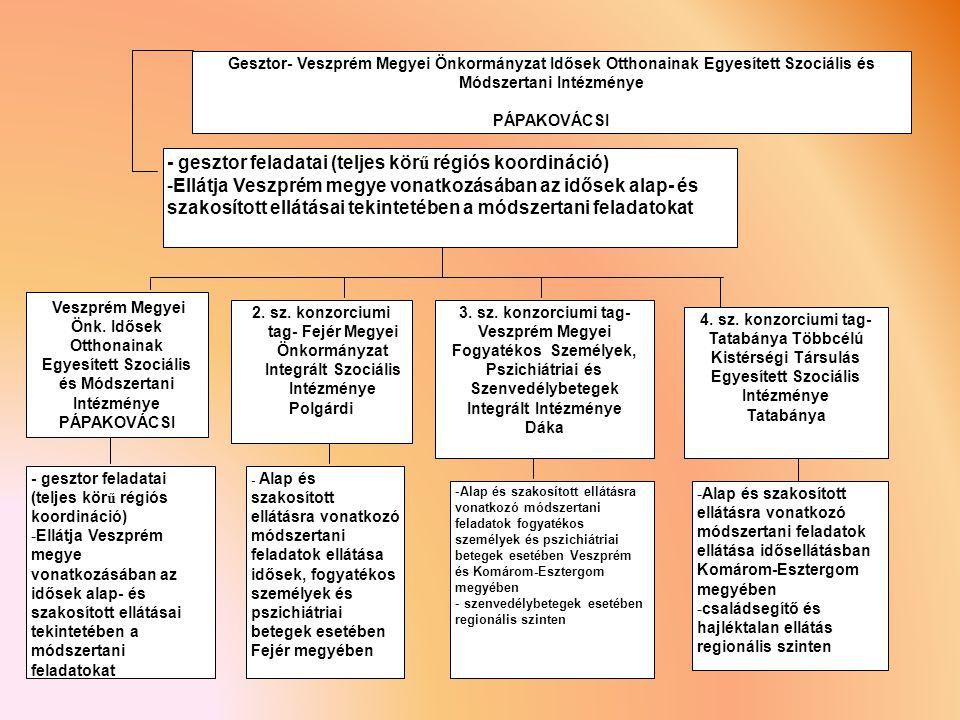 - gesztor feladatai (teljes körű régiós koordináció)