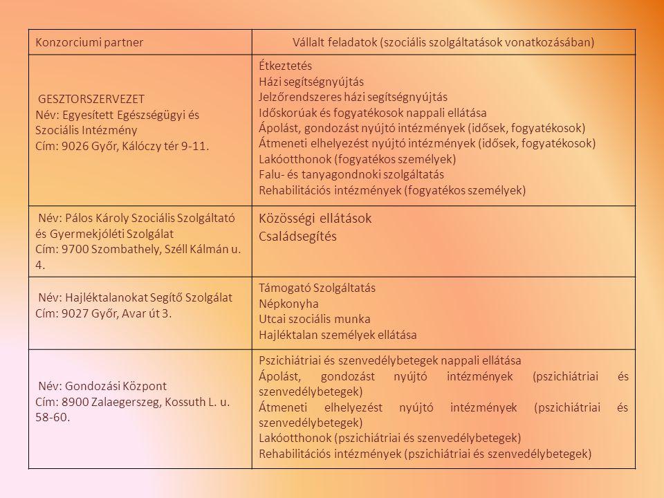 Vállalt feladatok (szociális szolgáltatások vonatkozásában)