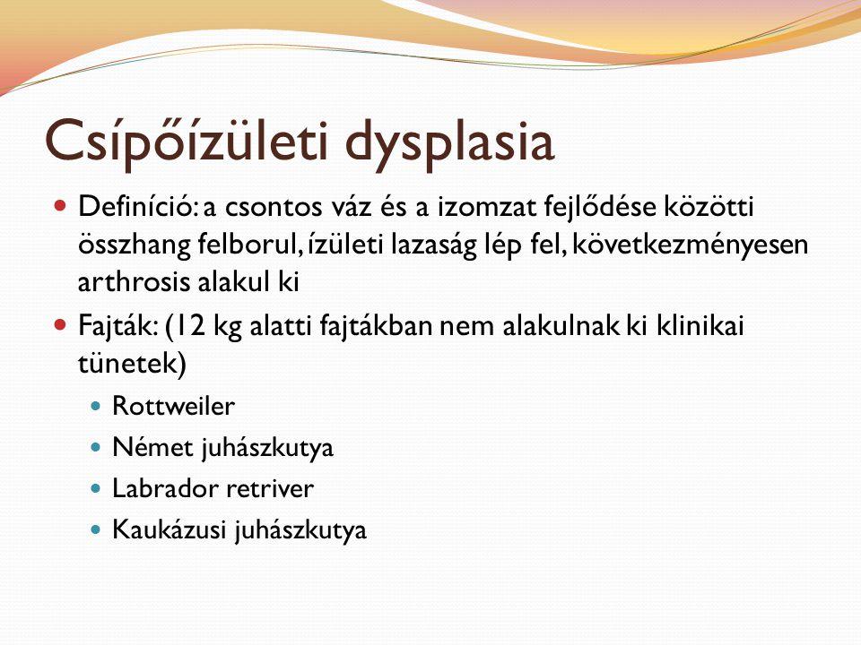 Csípőízületi dysplasia