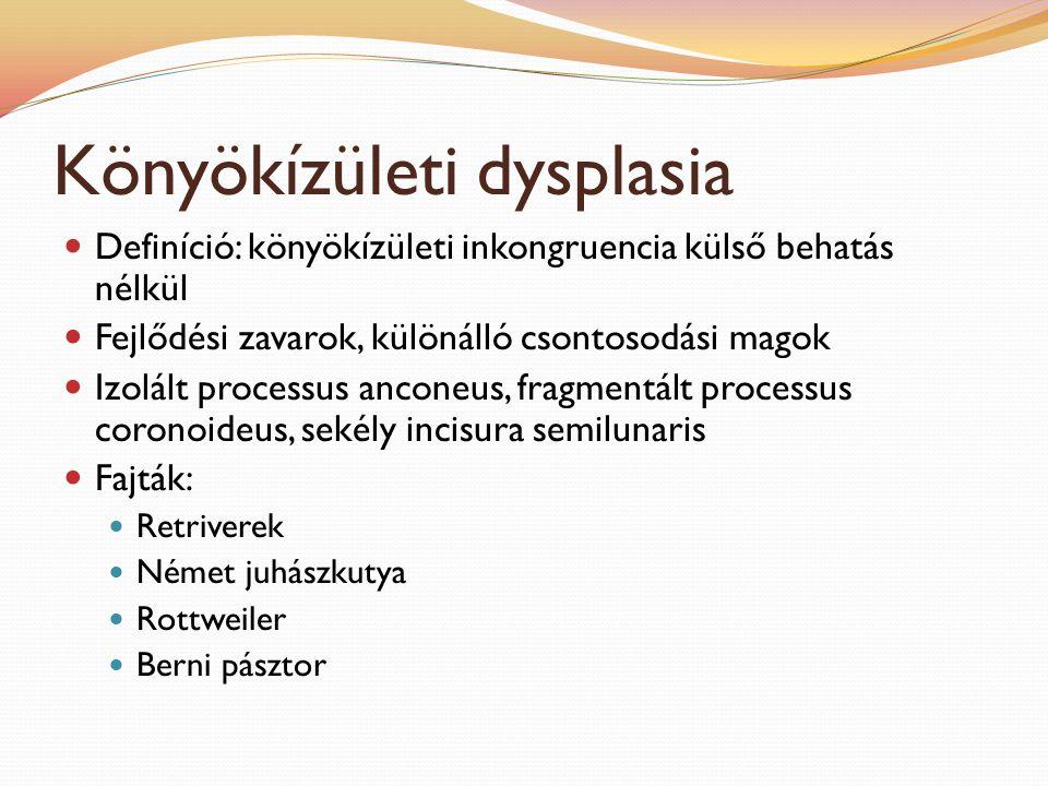 Könyökízületi dysplasia