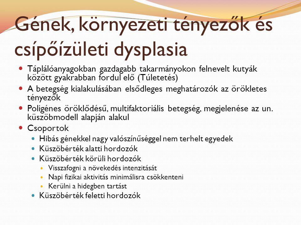 Gének, környezeti tényezők és csípőízületi dysplasia