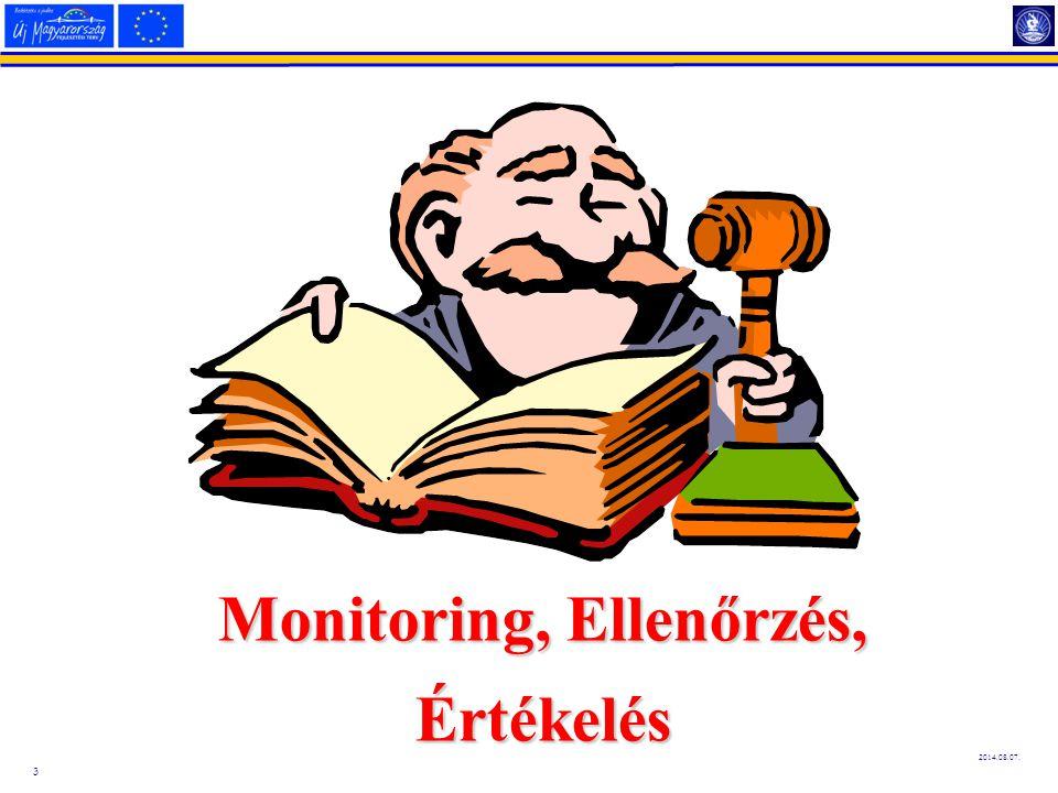 Monitoring, Ellenőrzés,