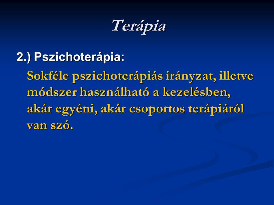 Terápia 2.) Pszichoterápia: