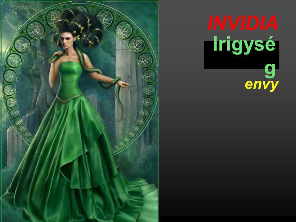 INVIDIA Irigység envy
