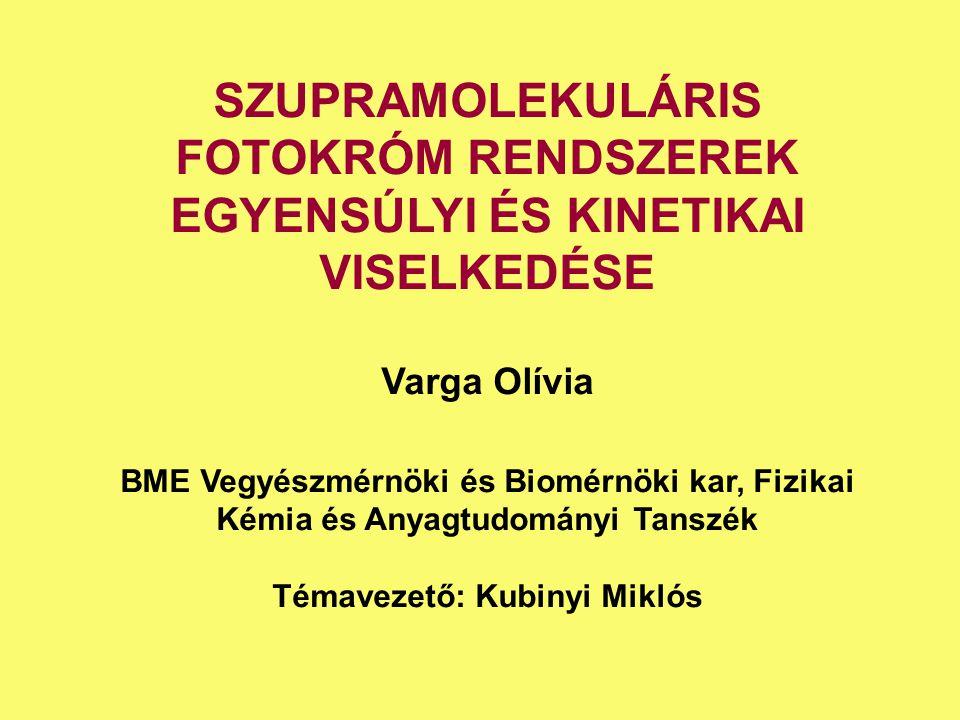 Témavezető: Kubinyi Miklós