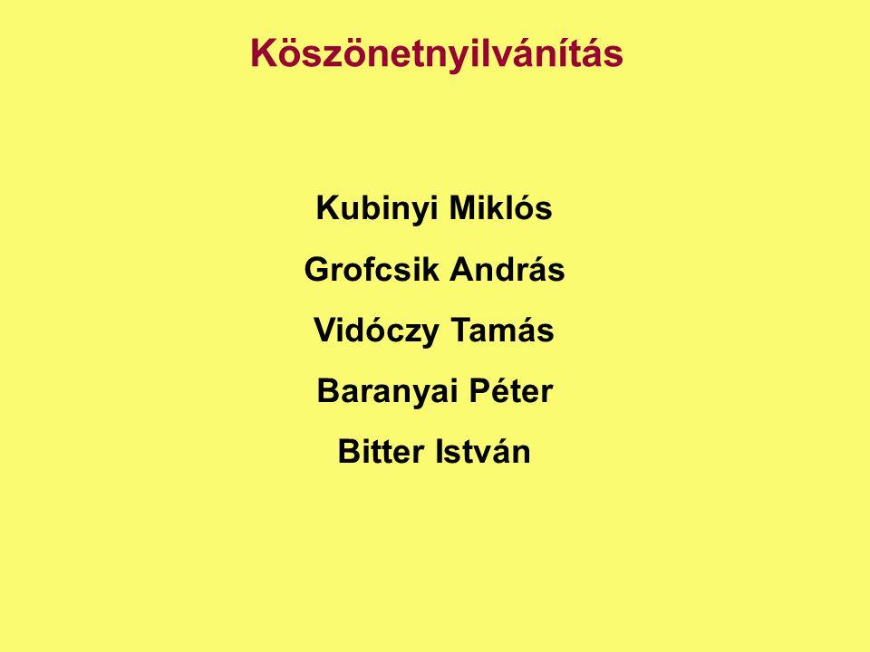 Köszönetnyilvánítás Kubinyi Miklós Grofcsik András Vidóczy Tamás