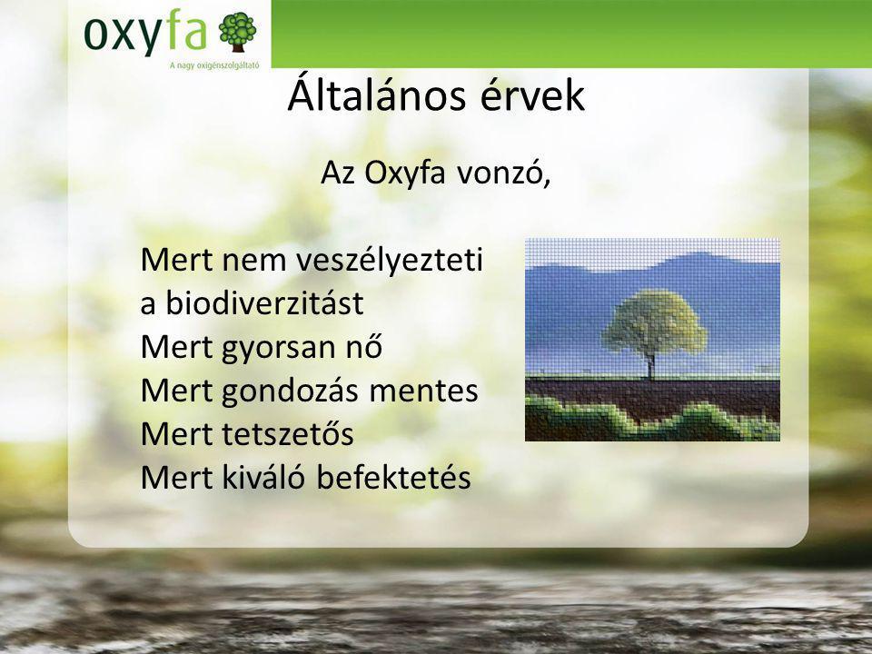 Általános érvek Az Oxyfa vonzó, Mert nem veszélyezteti a biodiverzitást Mert gyorsan nő Mert gondozás mentes Mert tetszetős Mert kiváló befektetés