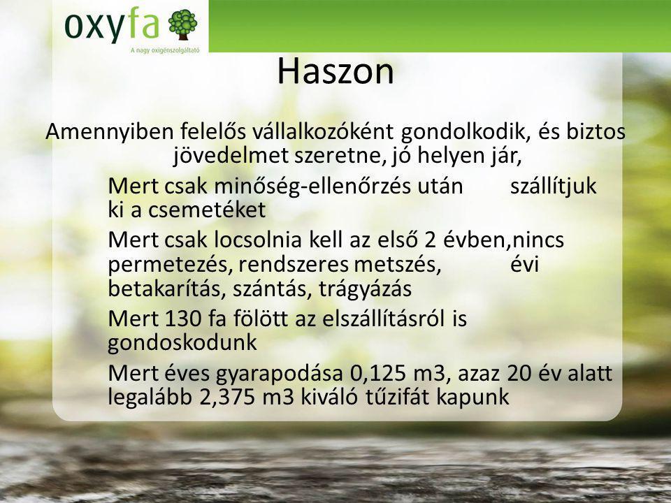 Haszon