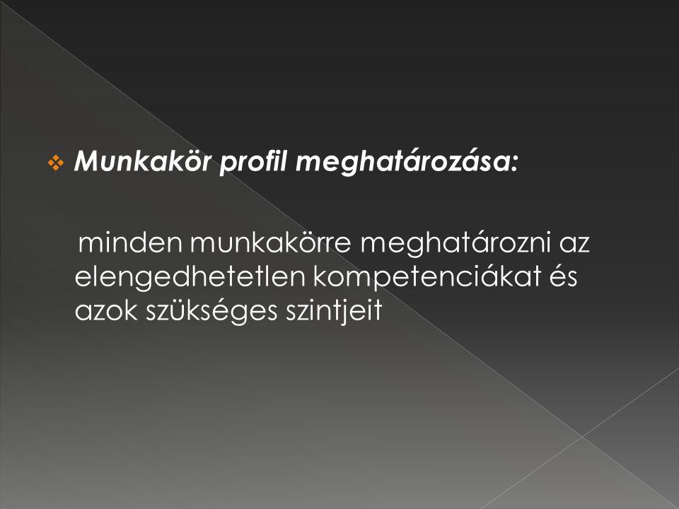 Munkakör profil meghatározása: