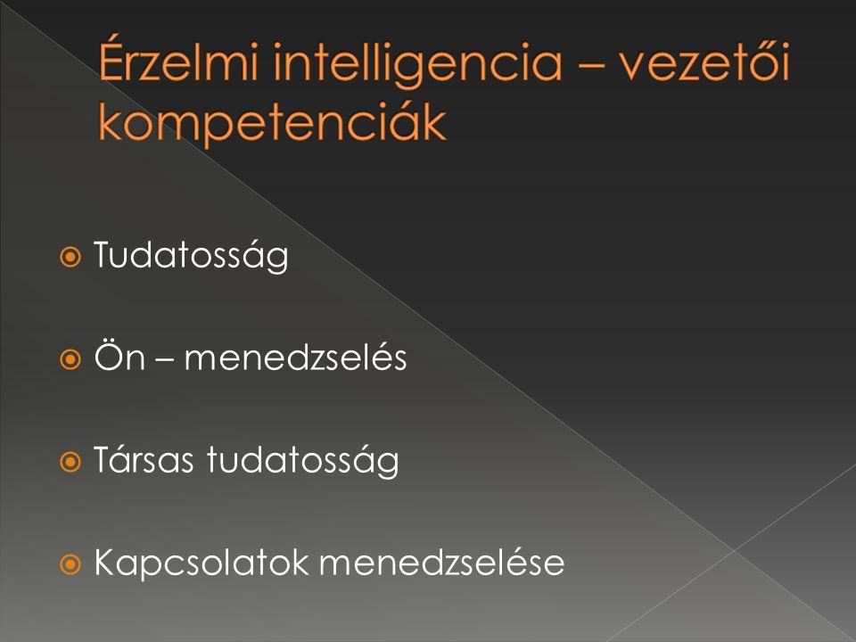 Érzelmi intelligencia – vezetői kompetenciák