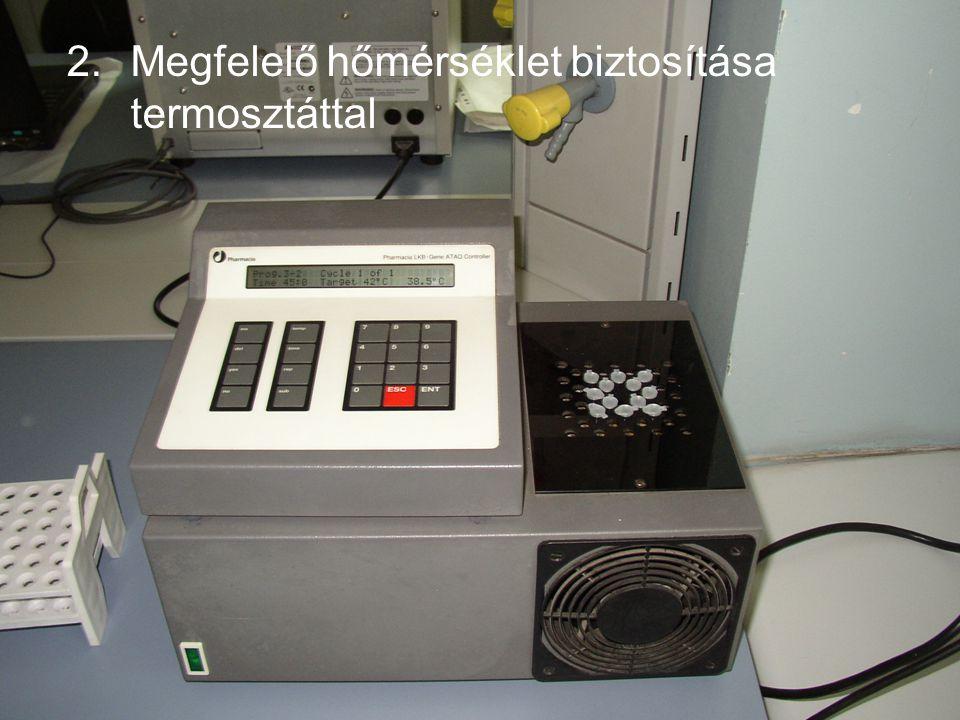Megfelelő hőmérséklet biztosítása termosztáttal