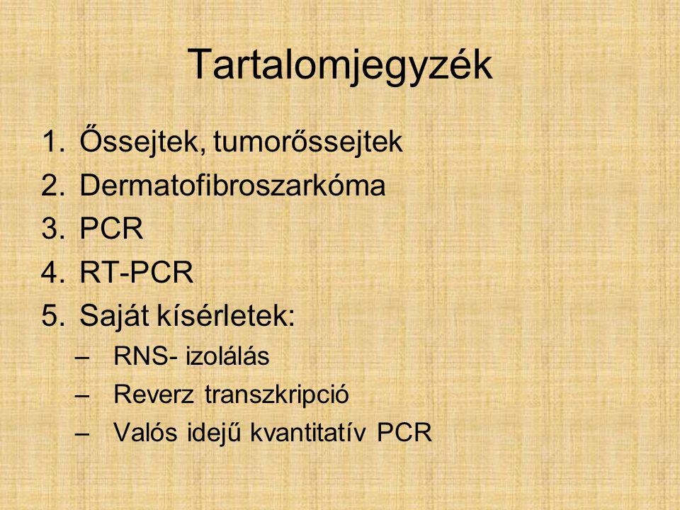 Tartalomjegyzék Őssejtek, tumorőssejtek Dermatofibroszarkóma PCR