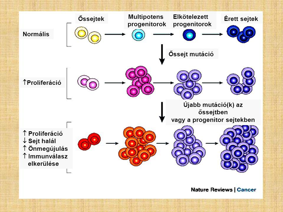 Újabb mutáció(k) az őssejtben vagy a progenitor sejtekben