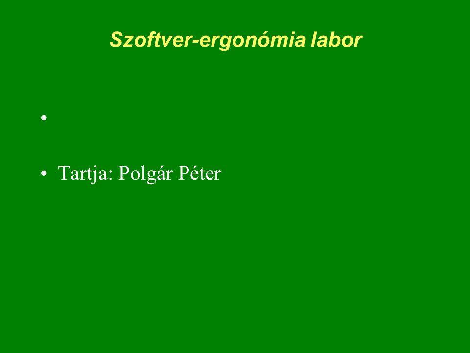Szoftver-ergonómia labor