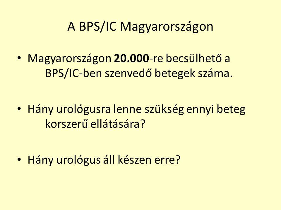 A BPS/IC Magyarországon