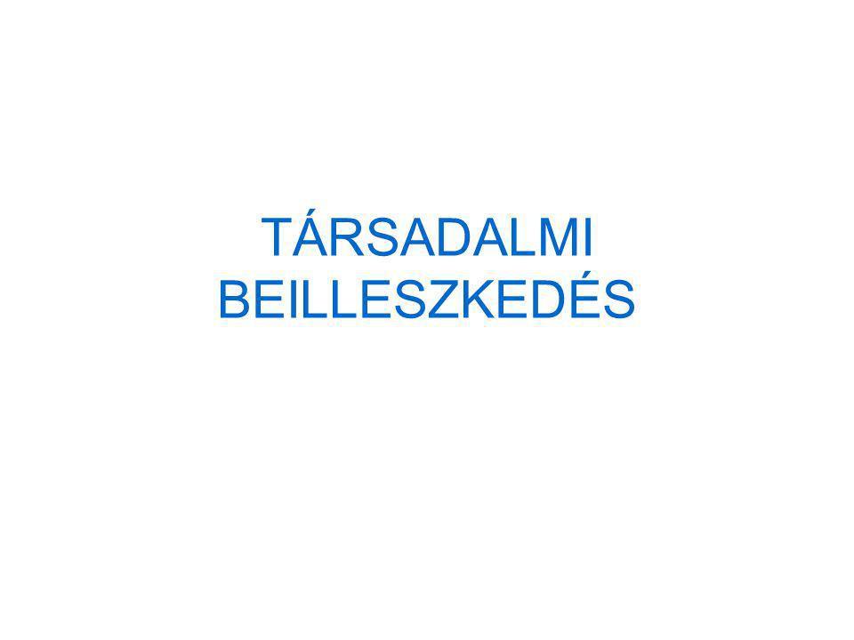 TÁRSADALMI BEILLESZKEDÉS