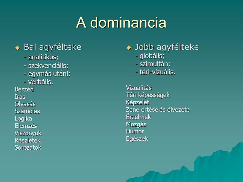 A dominancia Bal agyfélteke - analitikus; Jobb agyfélteke - globális;