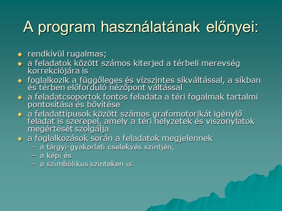 A program használatának előnyei: