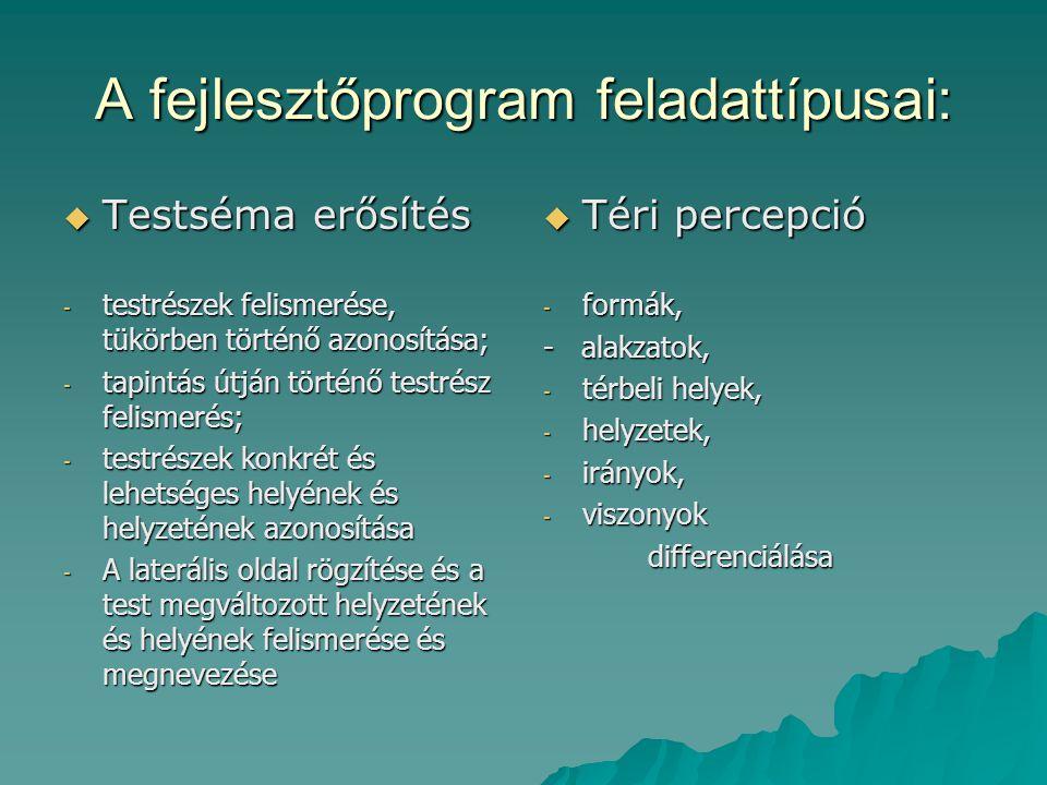 A fejlesztőprogram feladattípusai: