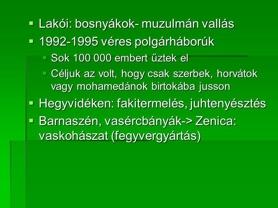 Lakói: bosnyákok- muzulmán vallás 1992-1995 véres polgárháborúk