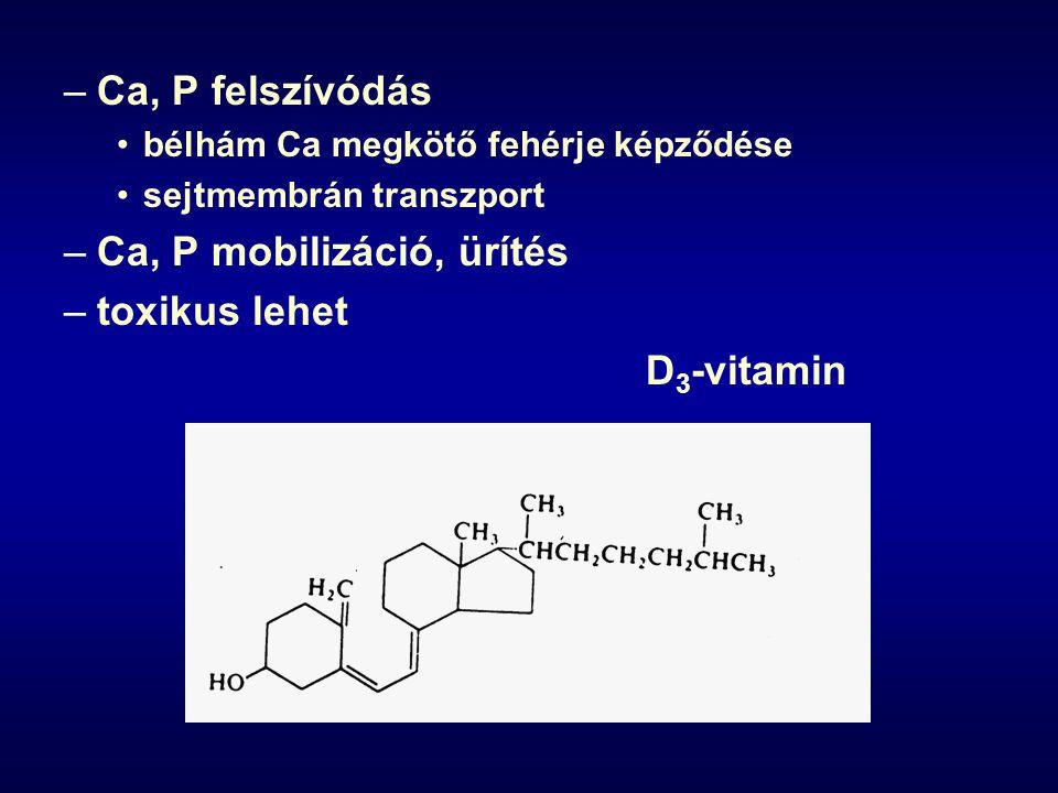 Ca, P mobilizáció, ürítés toxikus lehet D3-vitamin