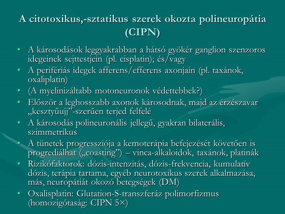 A citotoxikus,-sztatikus szerek okozta polineuropátia (CIPN)