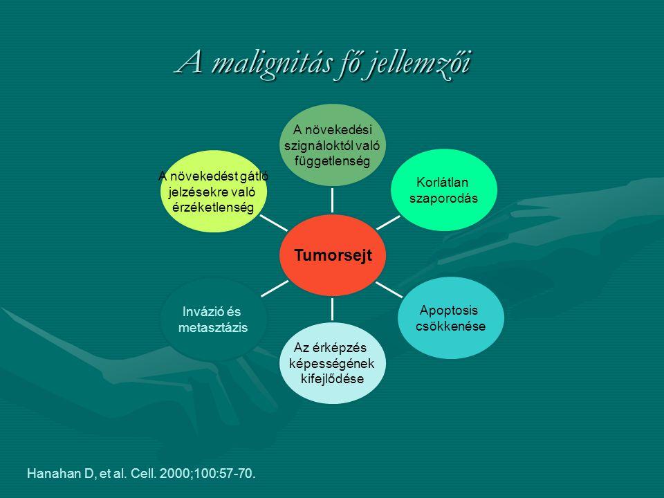 A malignitás fő jellemzői