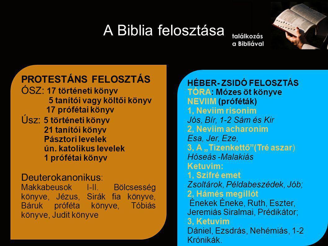 A Biblia felosztása PROTESTÁNS FELOSZTÁS ÓSZ: 17 történeti könyv