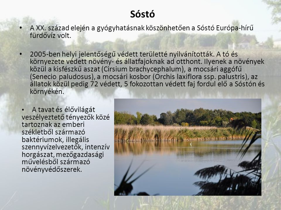 Sóstó A XX. század elején a gyógyhatásnak köszönhetően a Sóstó Európa-hírű fürdővíz volt.