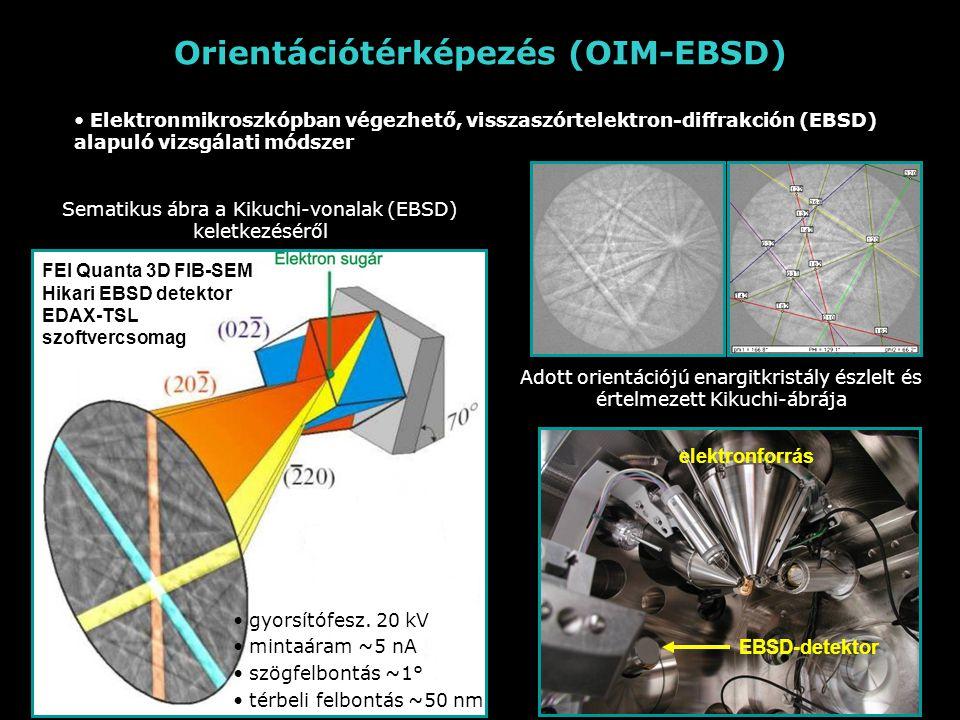 Orientációtérképezés (OIM-EBSD)