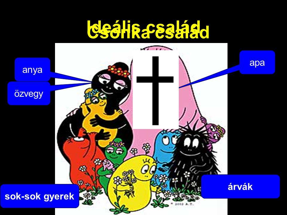 Ideális család Csonka család