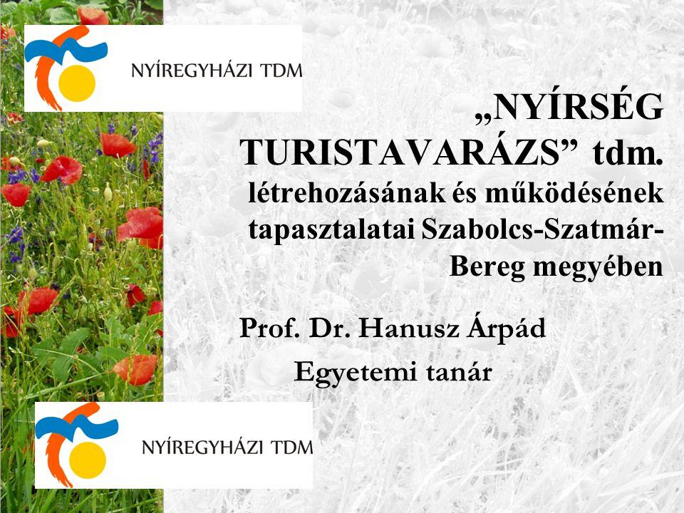 Prof. Dr. Hanusz Árpád Egyetemi tanár