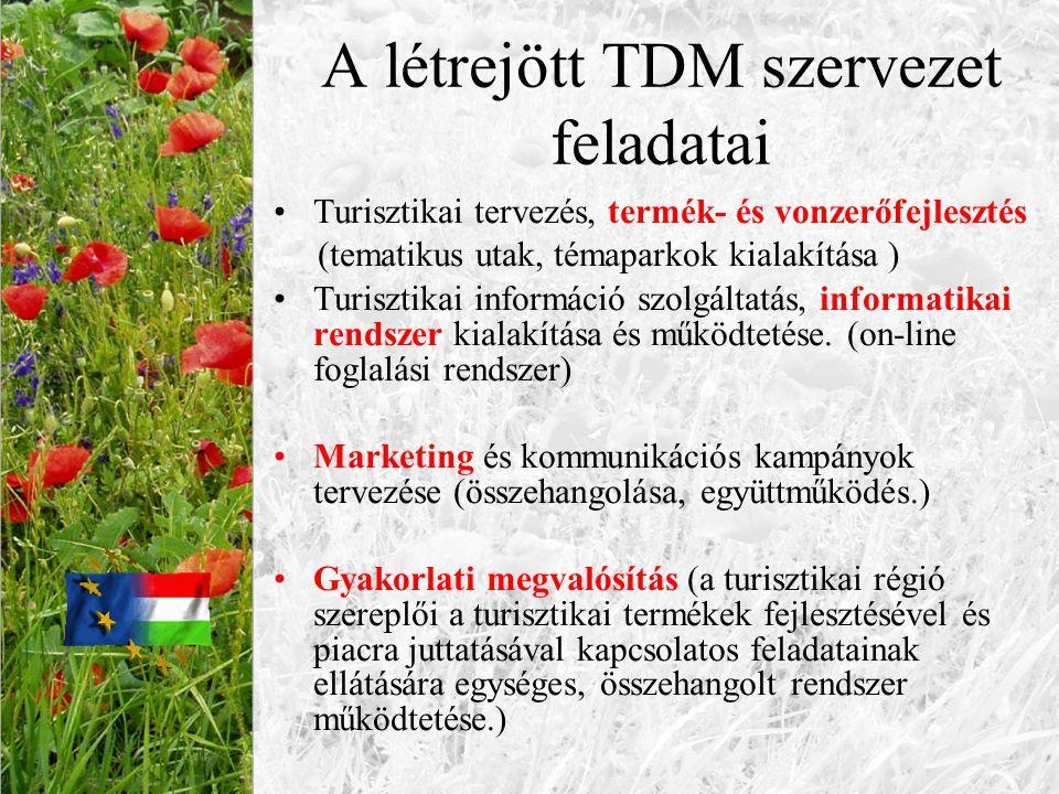 A létrejött TDM szervezet feladatai