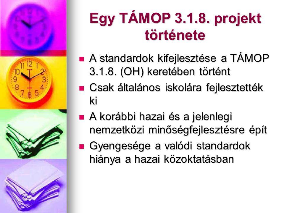 Egy TÁMOP 3.1.8. projekt története