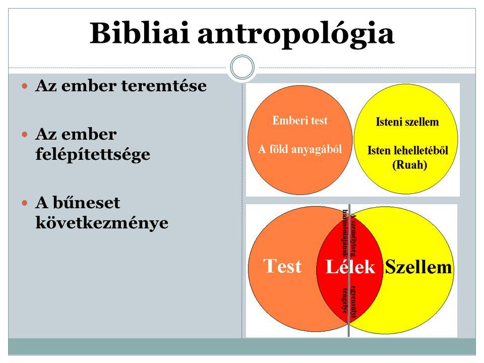 Bibliai antropológia Az ember teremtése Az ember felépítettsége